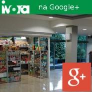 Ivora na Google+